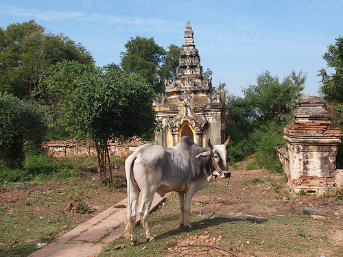 11_Mandalay