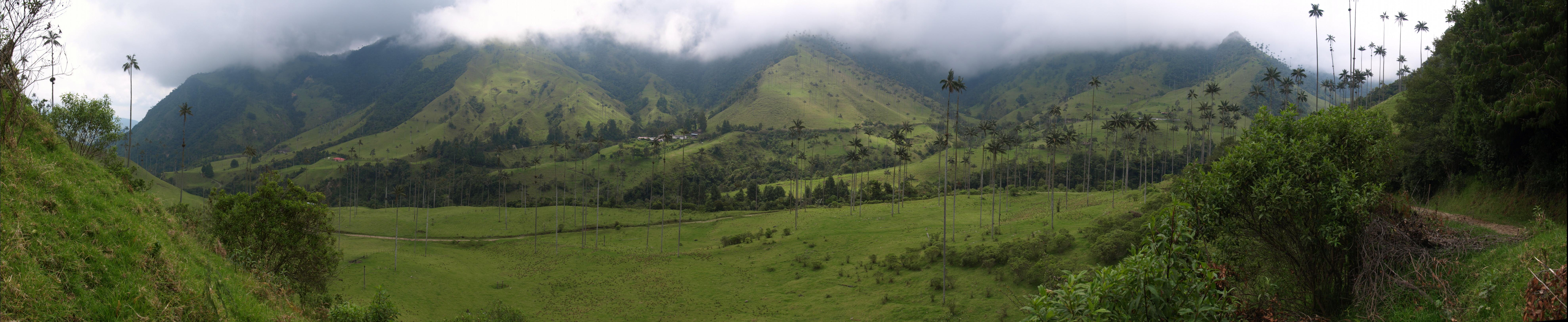 P5163017 pano Colombia Salento Cocora